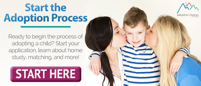 the adoption process should be screened properly for the safety of the child Finalization is the legal process which transfers custody of the child from the adoption agency, county, or state to the adoptive parents in a court hearing, an attorney represents the family and presents the case to the judge, resulting in the adoption decree.